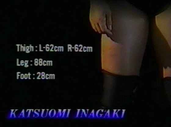 Inagaki 2